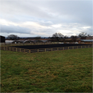 Equestrian Arena example one